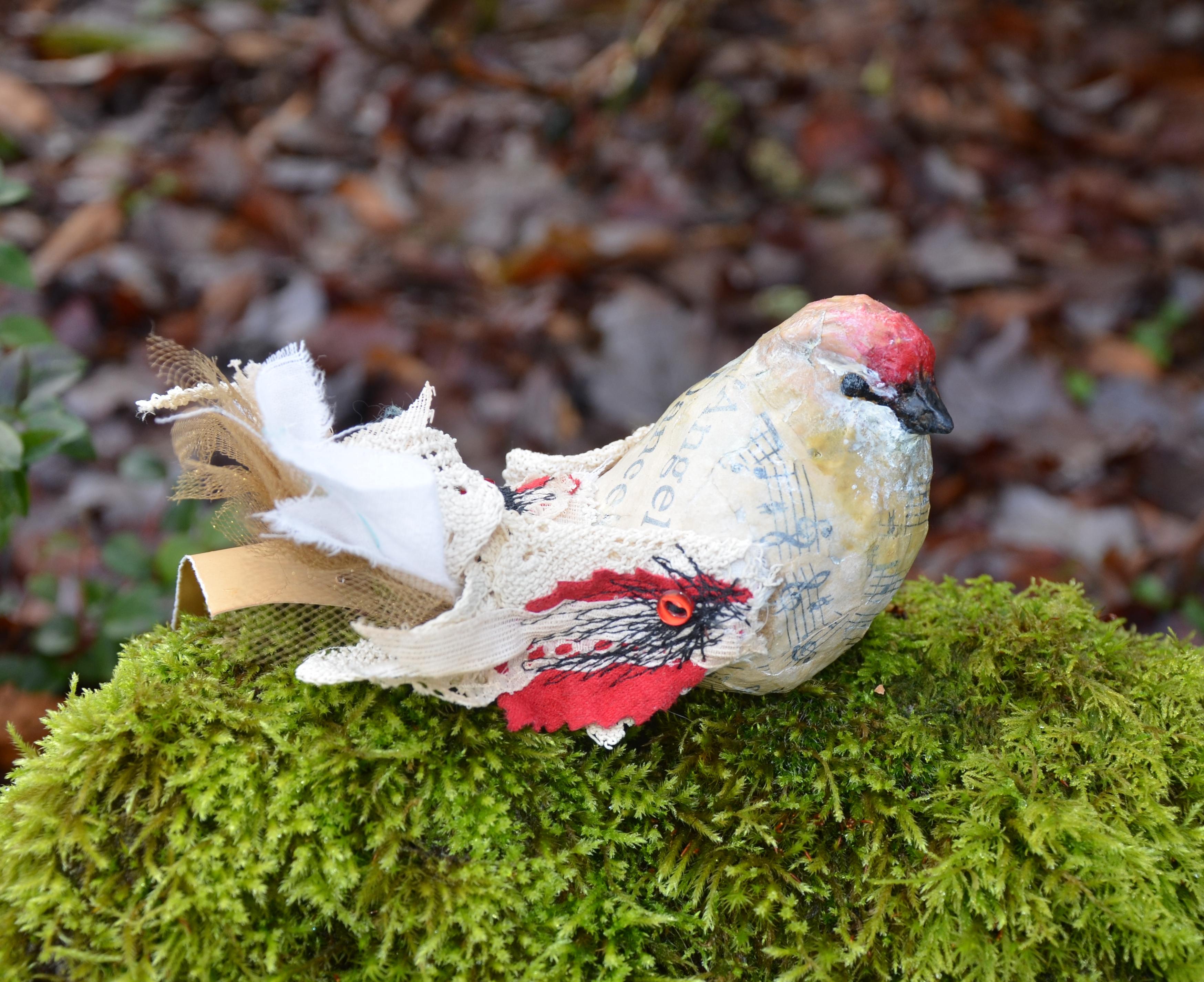 birds roost in backyard in portland lola u0027s girls art